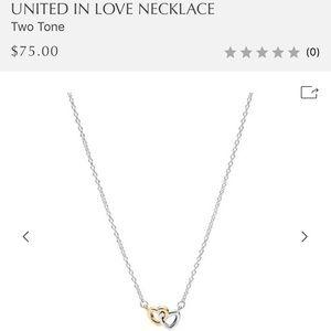 United in Love Pandora Necklace
